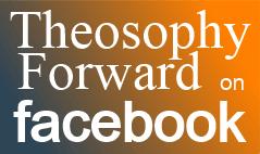 TF-Facebook-banner-2b.png